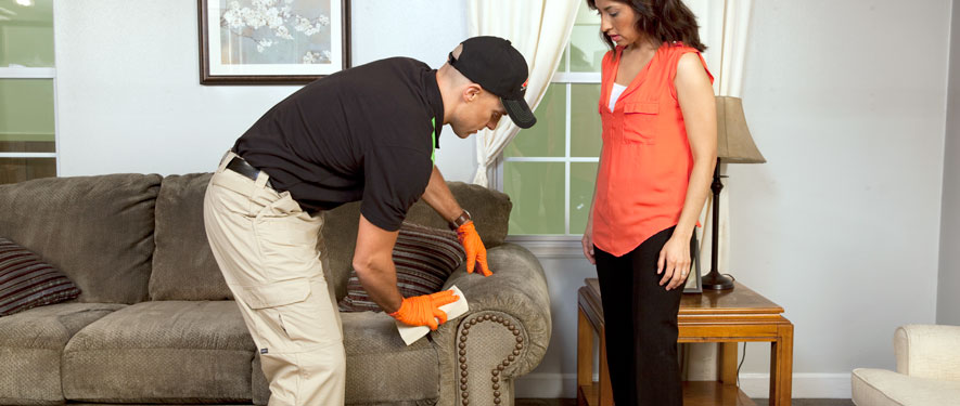 Dunmore, PA carpet upholstery cleaning